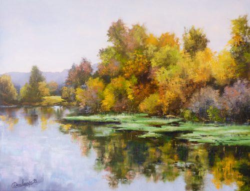 Les Lentilles Vertes sur la Saône