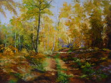Forêts en Automne
